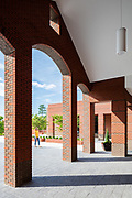 St. Mary Magdalene Catholic Church | Cannon Architects | Apex, North Carolina