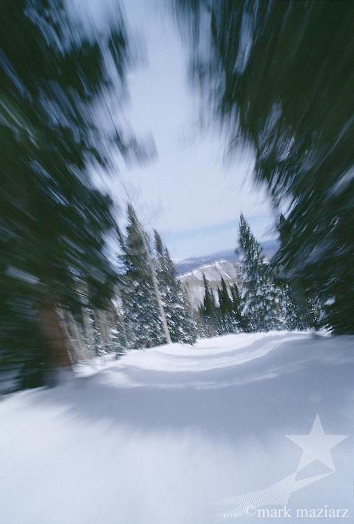 fast motion on skis through forest