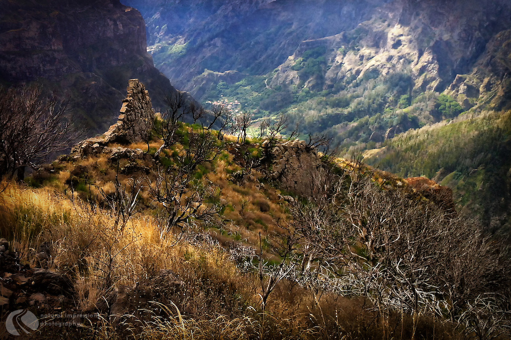 A tapestry of grass, stone and color, accidentally tossed here to be enjoyed by those who chose to walk the levadas of Madeira to the Peaks of the island.
