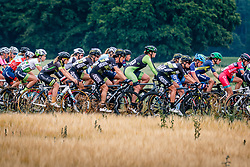 Peloton with Kirsten Wild of Cylance Pro Cycling during 2017 National Road Race Championships Netherlands for Women Elite, Montferland, The Netherlands, 24 June 2017. Photo by Pim Nijland / PelotonPhotos.com | All photos usage must carry mandatory copyright credit (Peloton Photos | Pim Nijland)