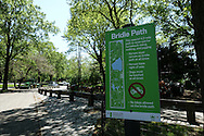 Signage in Central Park: Bridle Path