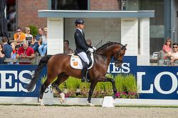 Minderhoud Hans Peter, NED, In Style<br /> Ermelo - Weltmeisterschaft Junge Dressurpferde 2019<br /> Finale für 6 jährige Dressurpferde<br /> Final for 6 years dressage horses<br /> 04. August 2019<br /> © www.sportfotos-lafrentz.de/Dirk Caremans