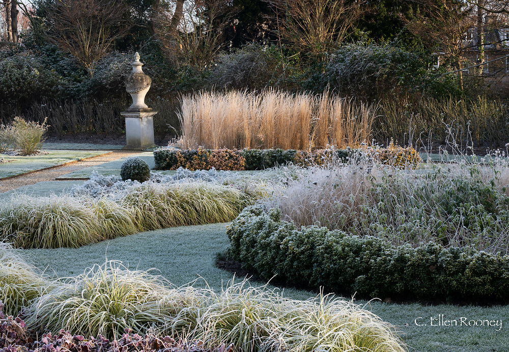 Frost coated plants and a stone urn in the Italian Garden at Chiswick House, Chiswick, London, UK