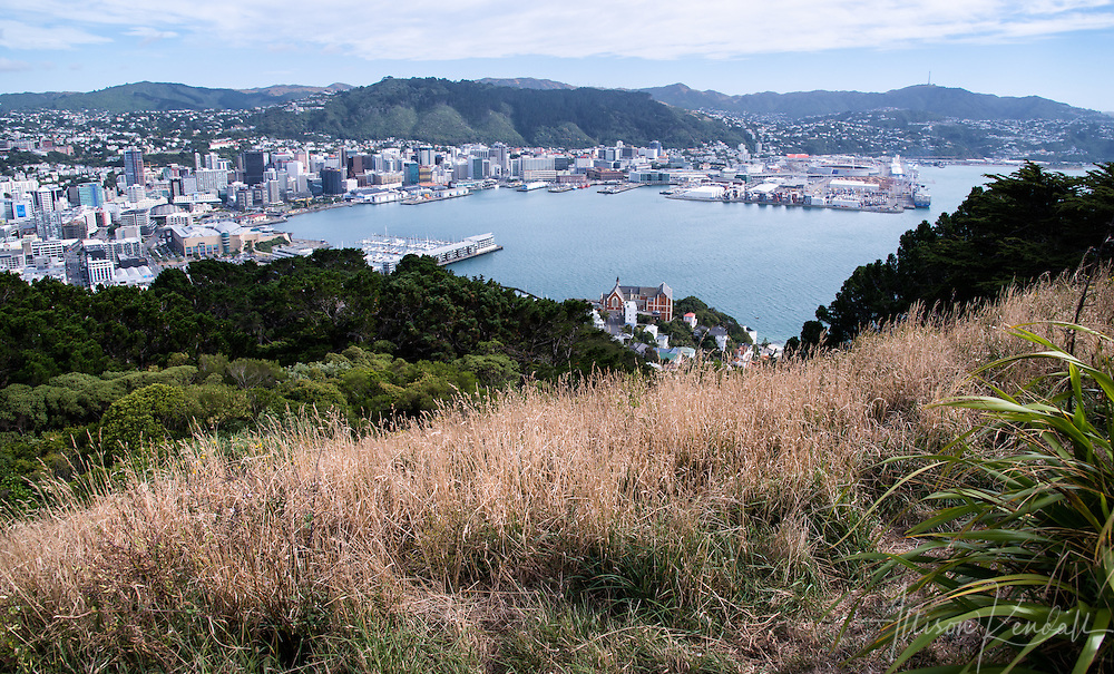 Views of New Zealand's capital city Wellington from Mt Victoria lookout