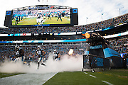 January 3, 2016: Carolina Panthers vs Tampa Bay Buccaneers. Panthers players run onto the field