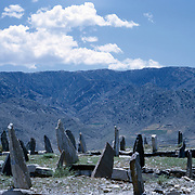 Late Summer? 1965<br /> Large plot of graves with unadorned head and foot stones surround by a wall.