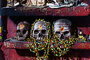 Skulls in the tiny temple of Shri Baba Chamunda Ram, an Aghori, Tantra and Yantra yogi.