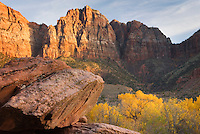 Evening light on the cliffs near the Watchman, Zion National Park Utah
