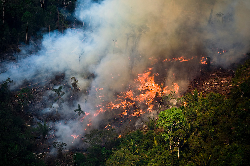 Man made forest fires near the BR 163 road and the Flona do Trairao (Trairao National Forest). West of Itaituba National Forest, Para, Brazil, August 10, 2008..Daniel Beltra/Greenpeace