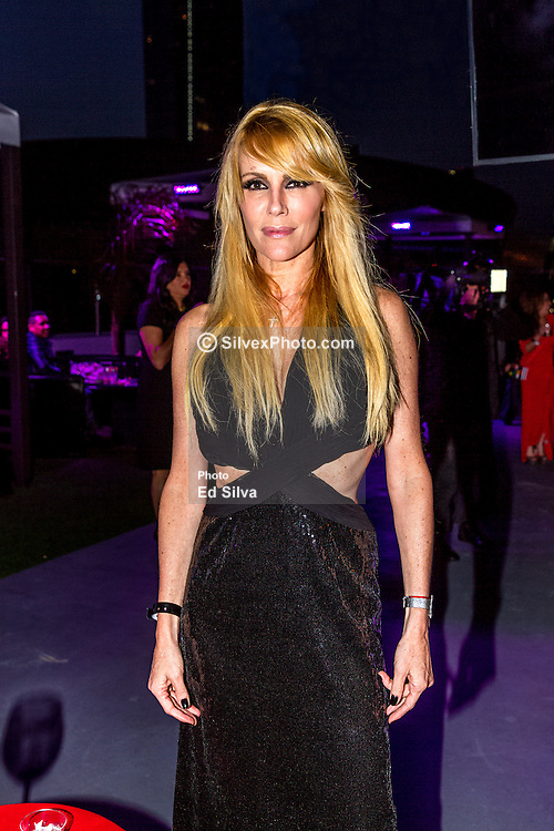 LOS ANGELES, CA - JUN 3: Actress and model Estela Mora attends Despegando Show VIP Launch party at Don Chente's Restaurant in downtown Los Angeles. The reality show is presented by Adriana Gallardo, founder and CEO of Adriana's Insurance. The show will coach chosen participants how to be successful entrepreneurs. 2015, June 3. Byline, credit, TV usage, web usage or linkback must read SILVEXPHOTO.COM. Failure to byline correctly will incur double the agreed fee. Tel: +1 714 504 6870.
