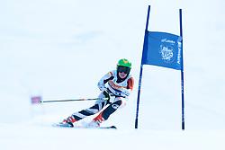 ROTHFUSS Andrea, GER, Giant Slalom, 2013 IPC Alpine Skiing World Championships, La Molina, Spain