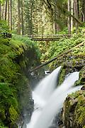 Sol Duc Falls in Olympic National Park near Forks, Washington in Olympic National Park, near Forks, Washington.