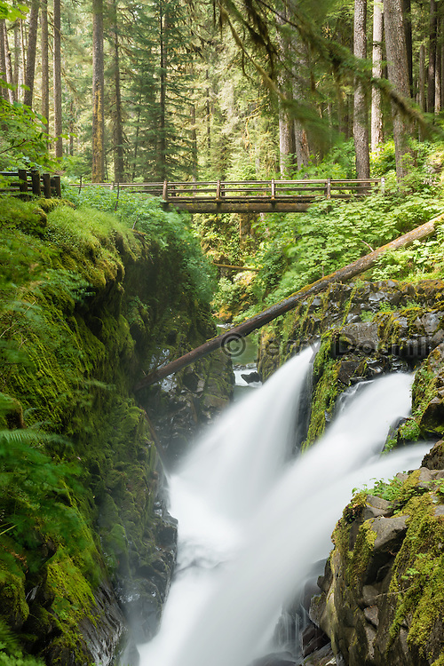 Sol Duc Falls in Olympic National Park near Forks, Washington in Olympic National Park, near Forks, Washington.