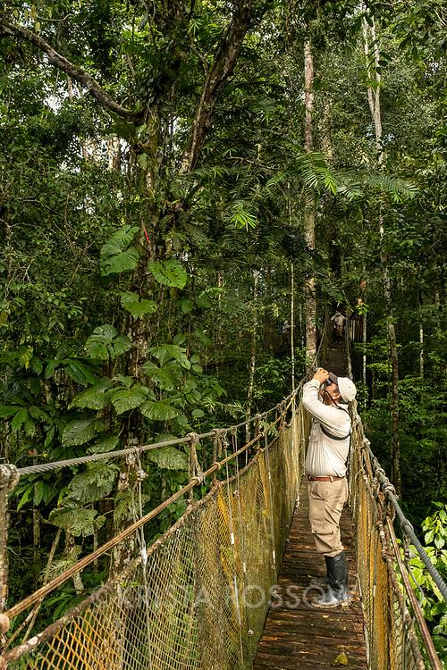 Naturalist Jairo Flores looks for wildlife through binoculars in the tropical rainforest at Amazon Natural Park.