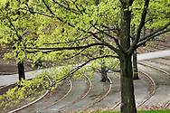 Amphitheater And Trees In Autumn
