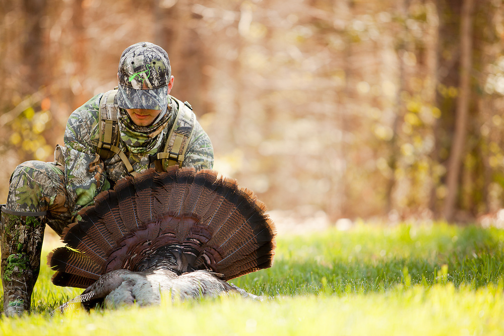 Admiring the fan of a freshly killed spring gobbler.