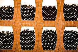 Wine bottles are seen in wine cellar in the Huadong Winery in Qingtao, China, June 23, 2009.