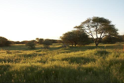 Travel, Gauteng, South Africa