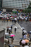 Scramble crossing at Hachiko Square Shibuya, reportedly the world's busiest pedestrian crossing. It's surrounded by video screens, giving a very bladerunner feel. It's overlooked by one of the busiest Starbucks cafes in the world, from where this photograph was taken. The crossing also features in a scene from Lost in Translation with Bill Murray and Scarlet Johansson..