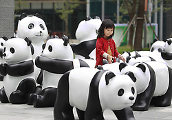 61633276<br /> A child watches lovely pandas during the 1St panda exhibition at Kerry Centre Square in Shanghai, East China, June 2, 2014. A total of 100 pandas made of leftover moso bamboos were displayed during the exhibition, Monday, 2nd June 2014. Picture by  imago / i-Images<br /> UK ONLY