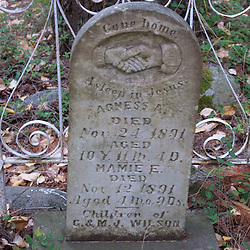 Old Gravestone, San Juan Island, Washington, US