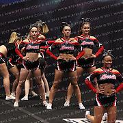 1200_Mavericks Cheerleaders - SYNERGY