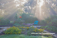 63821-23714 Sun rays in fog in flower garden, Marion Co., IL