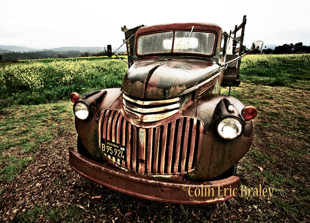 An antique winery truck sits near a field of mustard flowers in Napa Valley California. Colin E Braley (Wild West-Media)