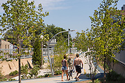 Walkers along the 606 elevated bike trail, green space and park built on the old Bloomingdale Line in the Wicker Park neighborhood in Chicago, Illinois, USA