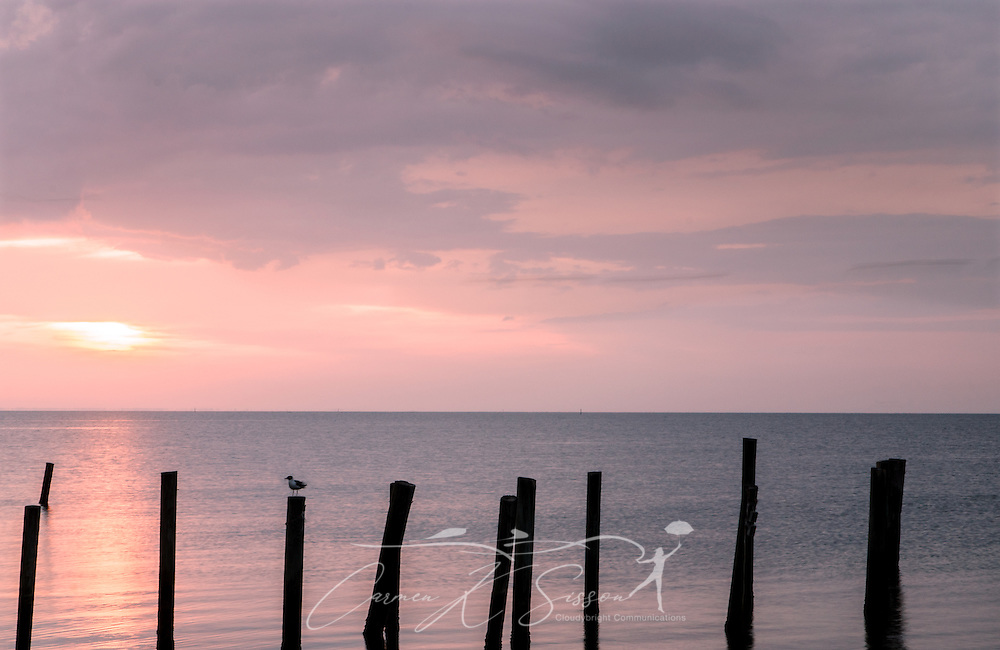 The sun rises in a soft pink sky over Mobile Bay near Dauphin Island, Alabama. (Photo by Carmen K. Sisson/Cloudybright)