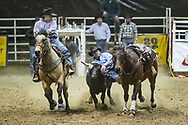 Steer wrestler Josh Bubel makes his run during slack at the Bismarck Rodeo on Saturday, Feb. 3, 2018. He had a time of 15.3 seconds. This photo and more from most runs are available at Bobwire-S.com.