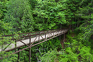 The bridge over the Englishman River at Englishman River Falls Provincial Park near Coombs, British Columbia, Canada