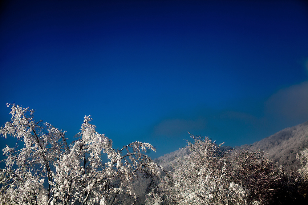 Winter landscape at Igman which is a mountain plateau in central Bosnia and Herzegovina. During the 1984 Winter Olympics, Igman was, along with Jahorina and Bjelašnica, the location of the competition in the alpine and Nordic sports disciplines. The family of Elvis settled in Hadžići  after the war ended in Bosnia. Hadžići is a town and a municipality located about 20 km south west of Sarajevo city but within the Sarajevo Canton of Bosnia and Herzegovina. According to the census of 2013, Hadžići municipality has a population of 23,891 residents.