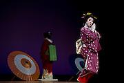Geisha perform various traditional dances from around Japan during a festival in Izu-Nagaoka, Shizuoka Prefecture, Japan..Photographer: Robert GilhoolyGeisha perform various traditional dances from around Japan during  the Genji Ayame festival in Izu-Nagaoka, Shizuoka Prefecture, Japan on 01 July, 2011..Photographer: Robert Gilhooly
