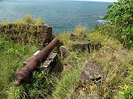 El Fuerte de San Lorenzo, localizado a la entrada del r&iacute;o Chagres en la provincia de Col&oacute;n, Panam&aacute;. Fue declarado por la UNESCO como Patrimonio de la Humanidad en el a&ntilde;o 1980 bajo la denominaci&oacute;n de las Fortificaciones de la costa caribe de Panam&aacute;, con las fortificaciones de la ciudad de Portobelo. Formaban el sistema defensivo para el comercio transatl&aacute;ntico de la Corona de Espa&ntilde;a y constituyen un magn&iacute;fico ejemplo de la arquitectura militar de los siglos XVII y XVIII.<br /> <br /> El fuerte de San Lorenzo es una de las m&aacute;s antiguas fortalezas espa&ntilde;olas en Am&eacute;rica. Est&aacute; localizado pr&oacute;ximo a lo que fue el viejo asiento del pueblo de Chagres, en la desembocadura del r&iacute;o del mismo nombre, y fue a trav&eacute;s de este r&iacute;o que el pirata Henry Morgan lleg&oacute; a la ciudad de Panam&aacute; &quot;La Vieja&quot; para saquearla.<br /> <br /> &copy;Alejandro Balaguer/Fundaci&oacute;n Albatros Media.