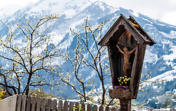 THEMENBILD - ein Marterle (Bildstock mit Jesus am Kreuz) vor schneebedeckten Bergen und blühenden Bäume aufgenommen am 29. April 2017, Kaprun, Österreich // A statue of Christ (on the cross) with snow-capped mountains and flowering trees at Kaprun, Austria 2017/04/29. EXPA Pictures © 2017, PhotoCredit: EXPA/ JFK