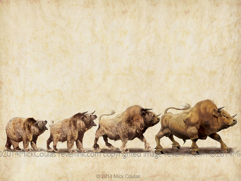 The Evolution of a Bull Market. Photo illustration for Wall Street Journal.