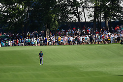 August 9, 2018 - St. Louis, MO, U.S. - ST. LOUIS, MO - AUGUST 09:  Tiger Woods (USA) walks alone down the fairway of the 17th hole during Round 1 of the PGA Championship August 9, 2018, at Bellerive Country Club in St. Louis, MO.  (Photo by Tim Spyers/Icon Sportswire) (Credit Image: © Tim Spyers/Icon SMI via ZUMA Press)