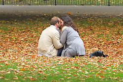 October 14, 2017 - London, United Kingdom - Fine autumn weather in St James Park. (Credit Image: © Claire Doherty/Pacific Press via ZUMA Wire)