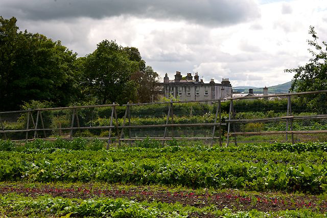 Walled garden at Longueville House, Mallow, County Cork, Ireland.