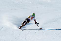 LUSCOMBE Braydon, CAN, Downhill, 2013 IPC Alpine Skiing World Championships, La Molina, Spain