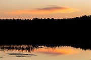 Cloud reflected in marsh at sunrise