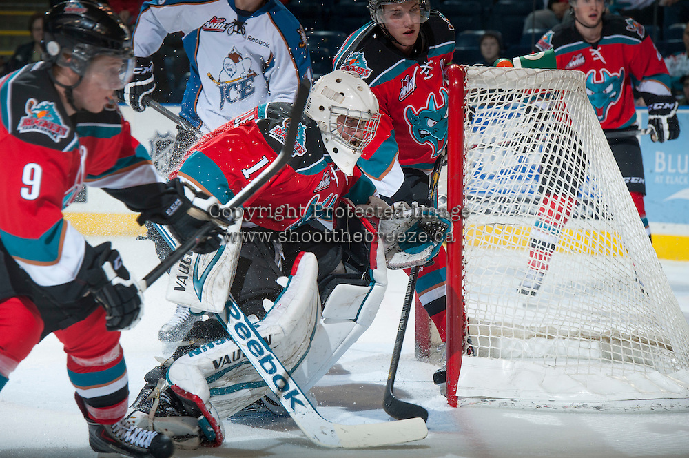 KELOWNA, CANADA - DECEMBER 7: Jackson Whistle #1 of the Kelowna Rockets defends the net against the Kootenay Ice on December 7, 2013 at Prospera Place in Kelowna, British Columbia, Canada.   (Photo by Marissa Baecker/Shoot the Breeze)  ***  Local Caption  ***