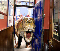 This week at the Galway Arts Festival the eye-popping visual feast that is the Dinosaur Petting Zoo is an extraordinary performance throught the streets of Galway into Ti Neachtain's. Children will got up close and personal with these amazingly life-like creatures during this fun-filled show. Photo:Andrew Downes