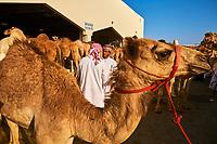 Sultanat d'Oman, gouvernorat de Ash Sharqiyah, Sinaw, jour de marché, rassemblement des bedouins  // Sultanate of Oman, Al Sharqiya Region, Sinaw, market day, Bedouin Women and men