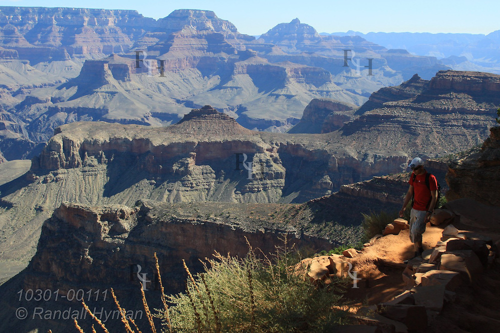 Man hikes up South Kaibab Trail near Cedar Ridge, Grand Canyon National Park, Arizona.