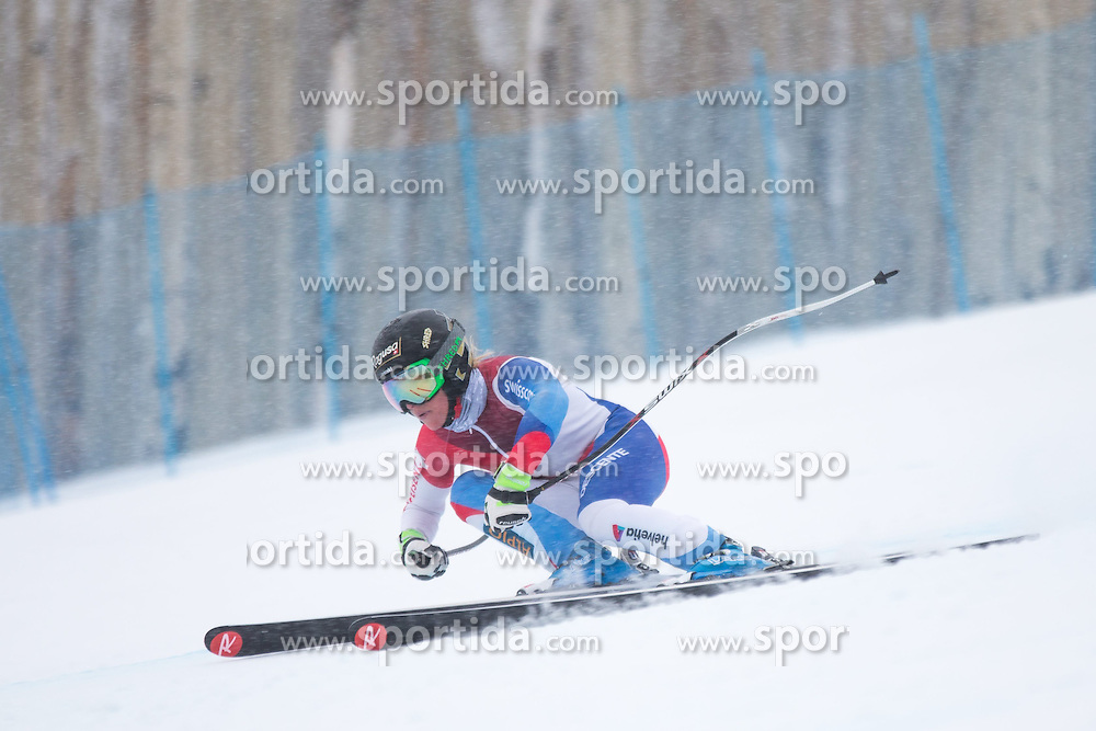 30.01.2015, Golden Peak Strecke, Vail, USA, FIS Weltmeisterschaften Ski Alpin, Training, im Bild Lara Gut (SUI) // Lara Gut of Switzerland in Action during a practice run for the FIS Ski World Championships 2015 at the Golden Peak Course, Vail, United States on 2015/01/30. EXPA Pictures © 2015, PhotoCredit: EXPA/ Johann Groder