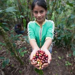 Honduras: Fairtrade