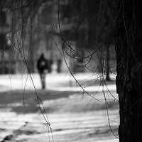 A blurred man walking away from a tree with hanging branches on a snow covered path in a park