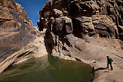 Eardley Pool sits near the mouth of Eardley Canyon, in Utah's San Rafael Reef at the eastern edge of the San Rafael Swell.<br /> <br /> The swell, approximately 75 miles (121 km) by 40 miles (64 km), consists of a giant dome-shaped anticline  of sandstone, shale, and limestone that was pushed up millions of years ago. Since that time, infrequent but powerful flash floods have eroded the sedimentary rocks into numerous valleys, canyons, gorges, mesas and buttes.